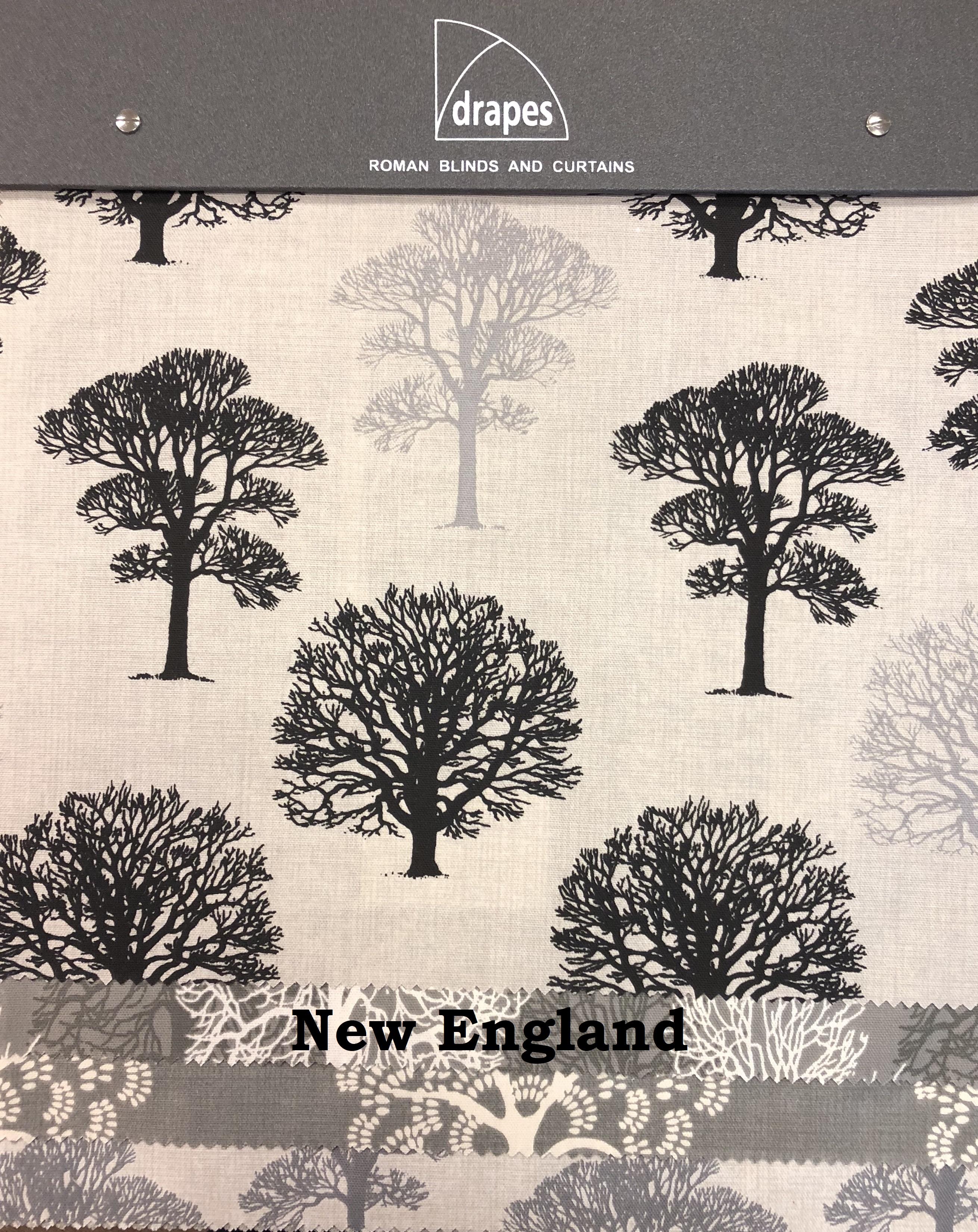 New England book